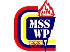 tournament software badminton philippines