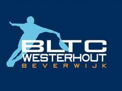 Westerhout Indoor Mixtoernooi